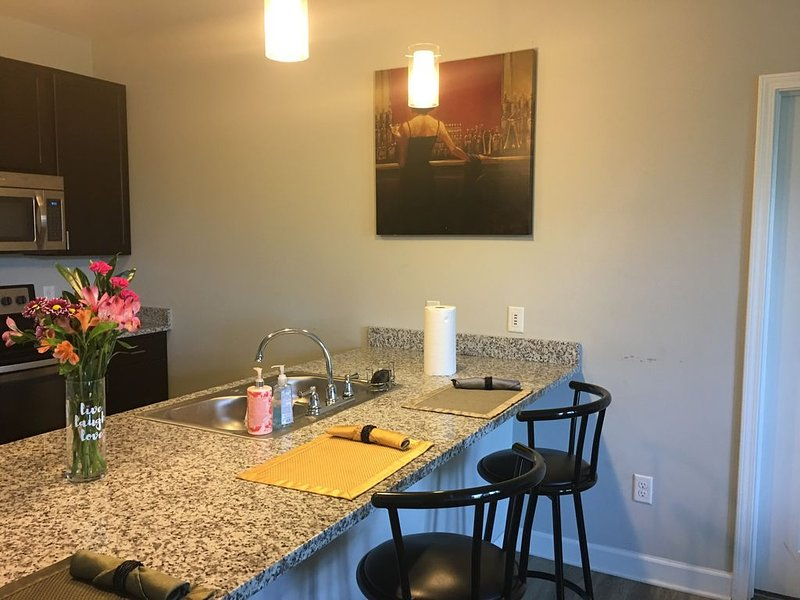 2 bed 2 bath conveniently located 15mins from downtown – semesterbostad i Brentwood