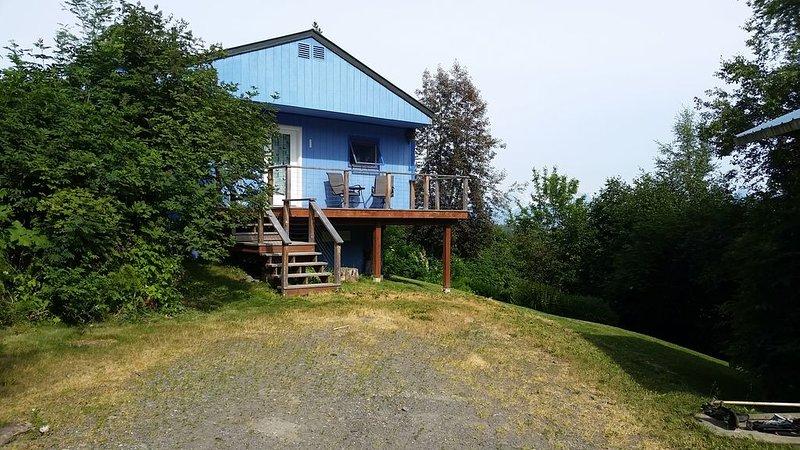 Coyote Hill Cabin - Private & Cozy, location de vacances à Fritz Creek
