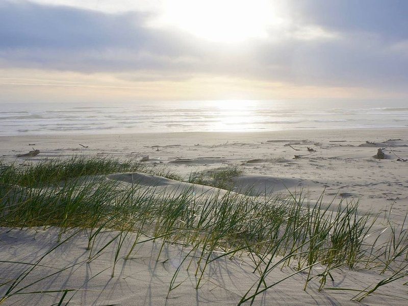 ON THE BEACH AND EXCELLENT WIFI!  -COMFY-SPACIOUS, DOGS-SO GREAT IN FALL!  COME! – semesterbostad i Waldport