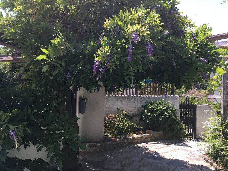Alonissos Old Village House, vacation rental in Alonnisos