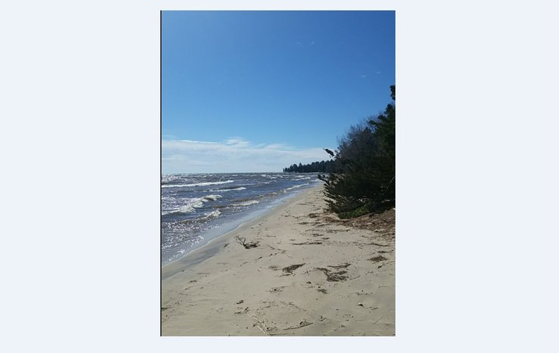 Sugar Sand Dune Beach Updated Cabin/Cottage, vacation rental in Black River