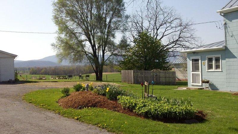 Uitzicht vanaf oprit met parkeerplaats en achtertuin. Bubbelbad achter hek.