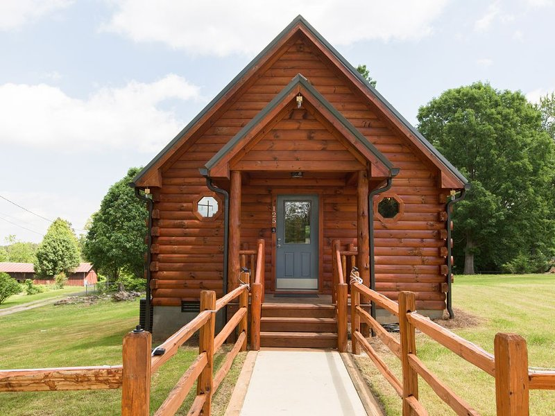 Burt's Cozy Log Cabin, holiday rental in Woodfin