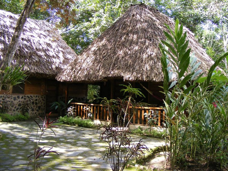 Hummingbird Cabana - Cohune Palms River Cabanas, holiday rental in San Ignacio
