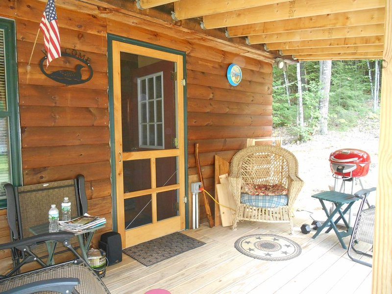 A Wonderful 1 Bedroom Cozy Cabin With A Loft In The Lakes Region!, vacation rental in Harrison