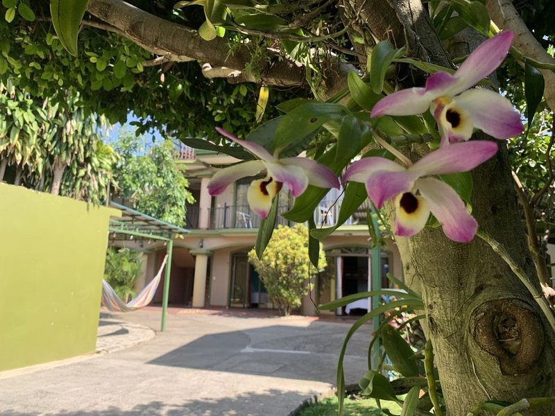 Double Room with garden view and breakfast included, vacation rental in Santa Barbara