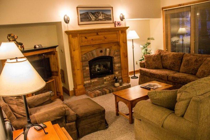 Salon avec foyer au propane.