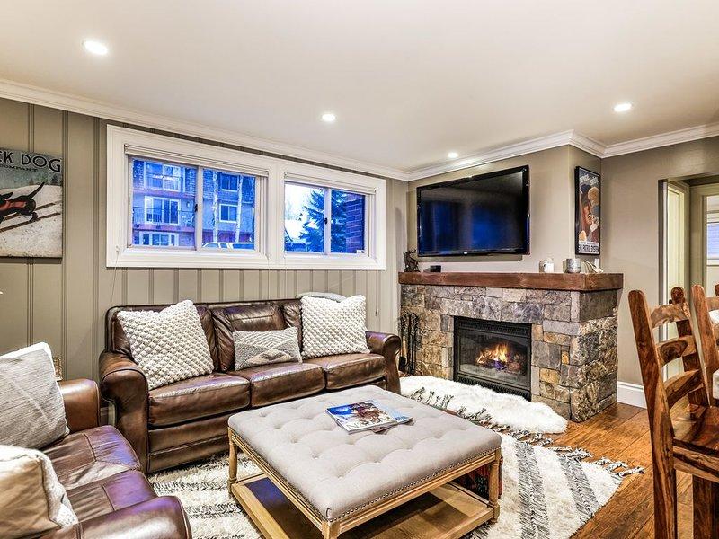 Splendid 2br Core Aspen, walking distance to all!, holiday rental in Aspen