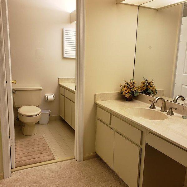 Master Bathroom Area
