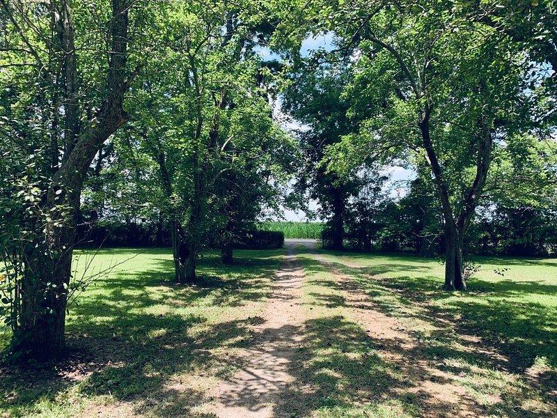 Cabin On A Beautiful Lake Sleeps 4 – semesterbostad i Natchez