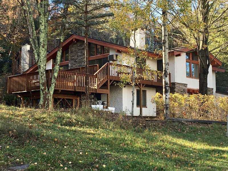 'NEW'LUXURY SKI-IN SKI-OUT ALPINE CHALET at WINDHAM MOUNTAIN...WEDDINGS WELCOME, location de vacances à Windham