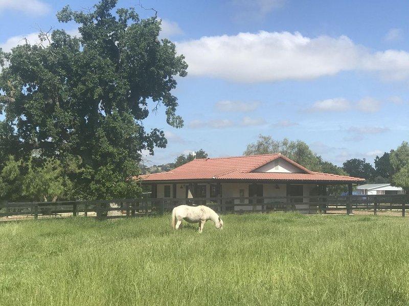 Romantic Hacienda Los Olivos, location de vacances à Los Olivos