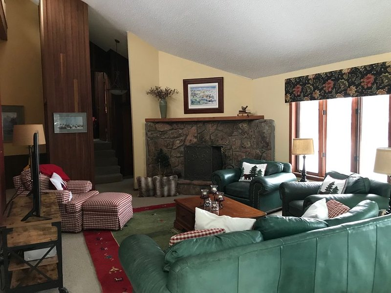 Wonderful location between Vail and Beaver Creek, vacation rental in Eagle-Vail
