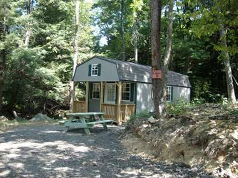 Getting Back To Nature- Furnished Cabin W/ Electricity Near Abrams Creek, holiday rental in Mount Storm