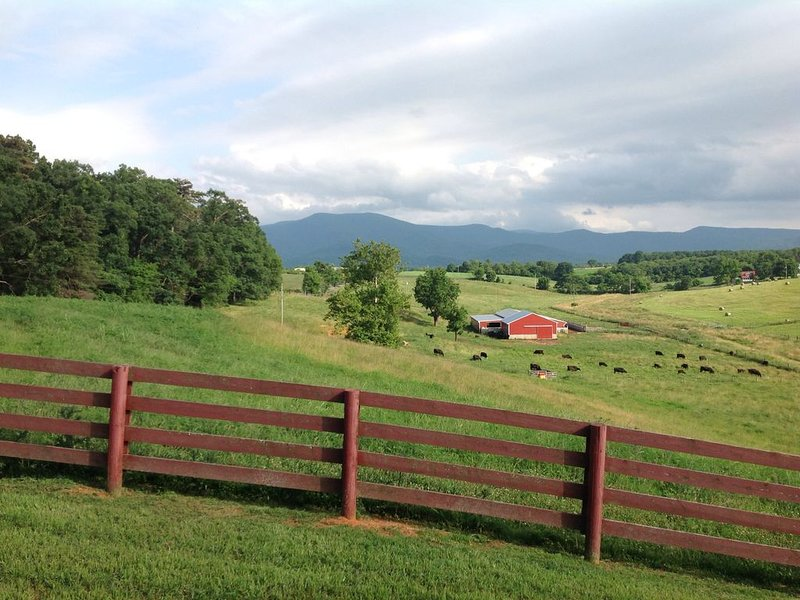 View from front porch Blue Ridge Mts