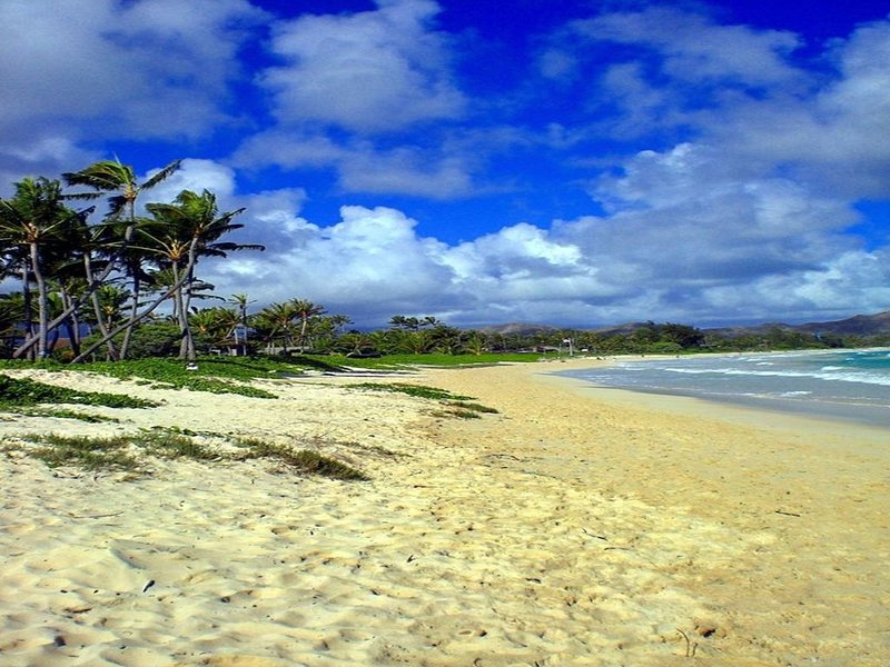 Private 2 Bedroom Across The Street From Kailua Beach!!, holiday rental in Kailua