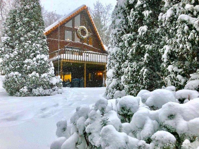 Designer A-Frame Cabin at the Lake! #BetterAtTheCabin, alquiler de vacaciones en New Buffalo