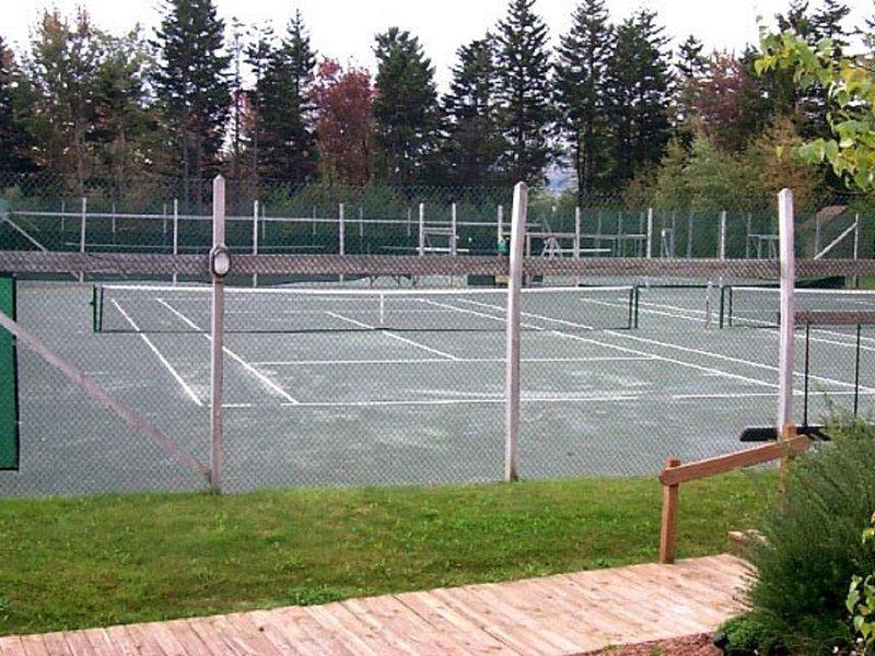 gran tenis