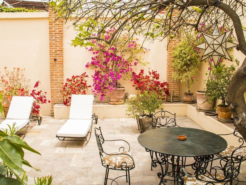Beautiful house at 15 minutes walking to the downtown church, vacation rental in San Miguel de Allende