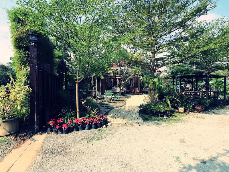 Leafy Greens Chiangmai : Peanut House (PH), holiday rental in San Sai