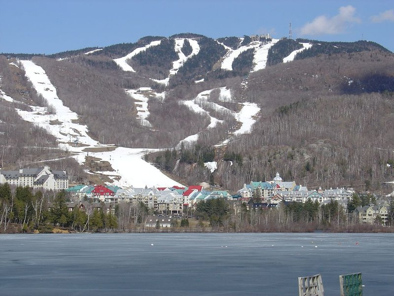 Ski/Golf/Ironman/Relaxing chalet directly on La Bete - 'Royal Tremblant', vacation rental in La Conception