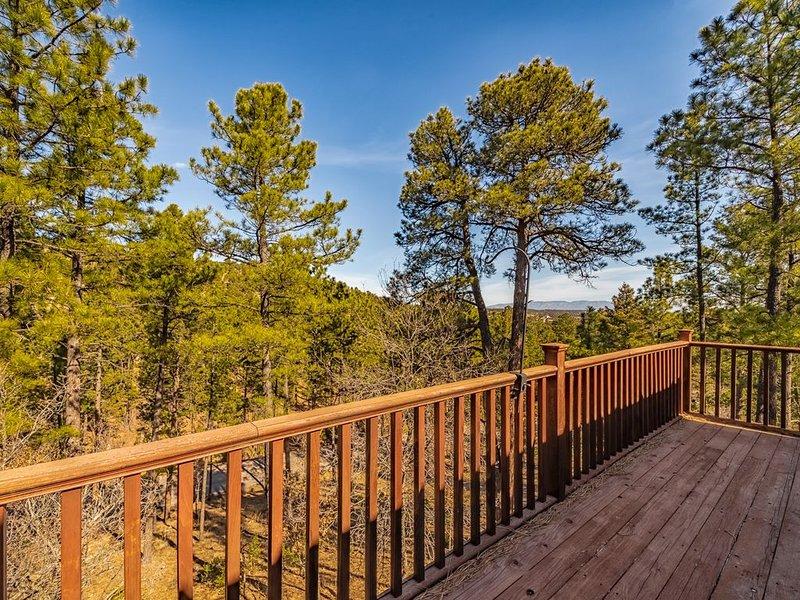 Mtn-View Alto Home on 1 Acre, 13Mi to Skiing!, alquiler de vacaciones en Alto