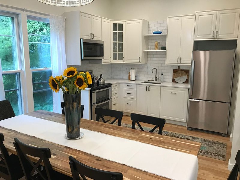 NEW light filled 1500 sq ft apt, lg kitchen, expansive family rm, 2 bedrm,1 bath, holiday rental in Reston