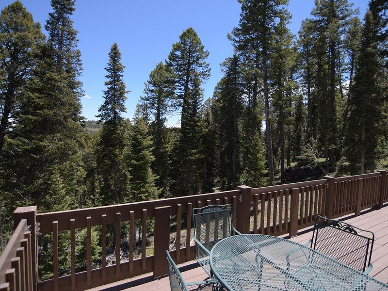 Hideaway tucked away in the San Juan Mts of Southwestern Colorado - Sleeps 4, alquiler de vacaciones en Cimarron