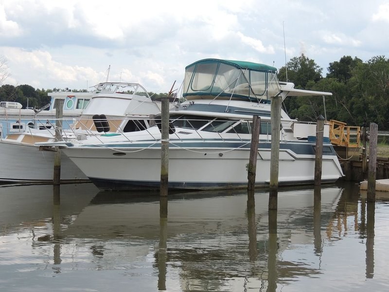 BEAUTIFUL BOAT AND RIVER VIEWS, WITH LOVELY ONSITE/ OUTDOOR RESTAURANT, location de vacances à Petersburg