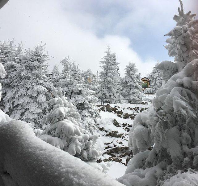 Vista nevada desde nuestra terraza
