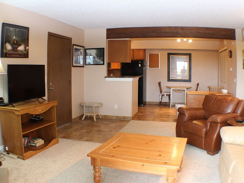 Executive, Fully Furnished, 3 month minimum or more  Condo home, Very Nice!, holiday rental in Lakewood