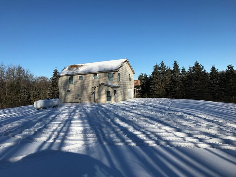 Winter Wonderland!  Secluded Chalet - Manistee Ntl Forest, close to Caberfae., casa vacanza a Irons