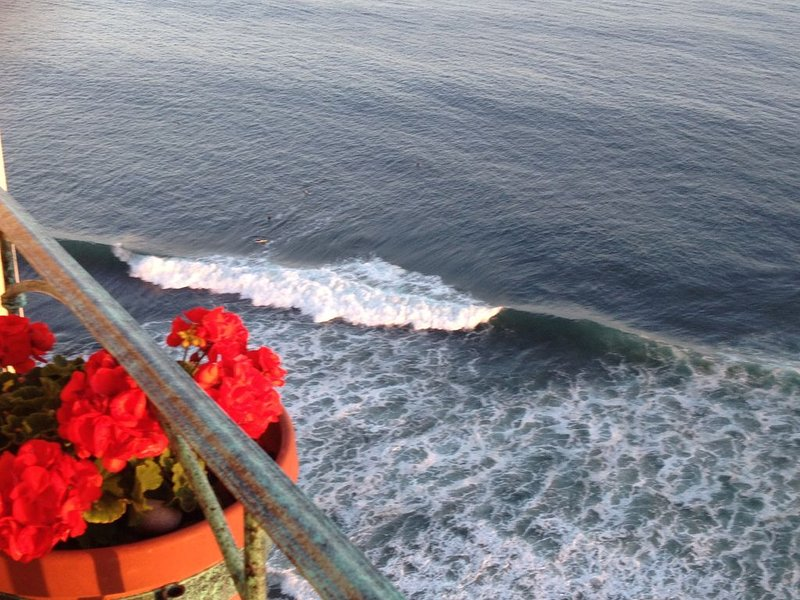 K-38.5 OCEANFRONT~Enjoy BEST VIEWS/SUNSETS~SEE VIDEO~92+ 5 ⭐️ Reviews, Ferienwohnung in Baja California Norte