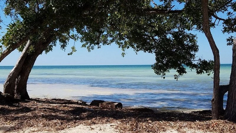 Beautiful vacation home in the heart of Islamorada , Florida Keys, holiday rental in Layton