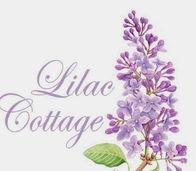 Lilac Cottage by the Lake, holiday rental in Westwood