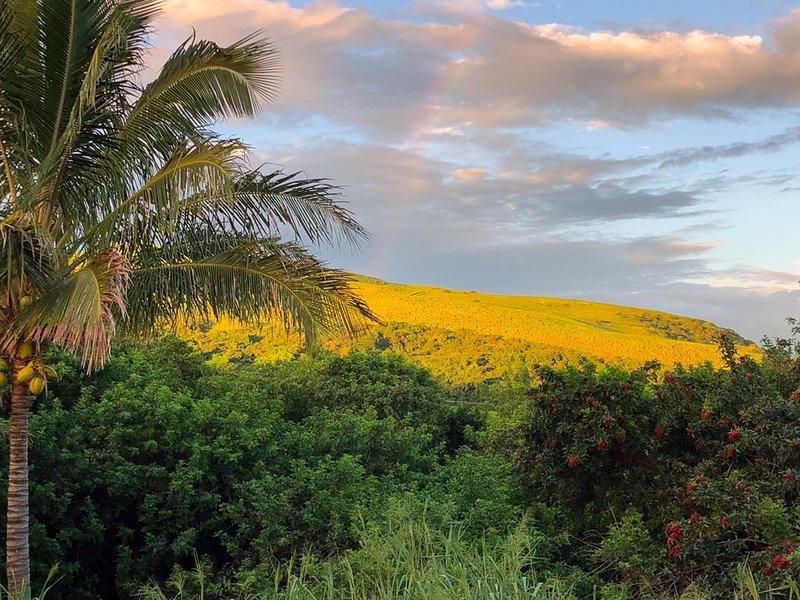 New Listing! Big Island Bed & Breakfast Lava Suite, location de vacances à Naalehu