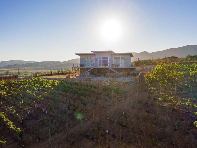 Buena Vista in Valle de Guadalupe, holiday rental in Villa de Juarez
