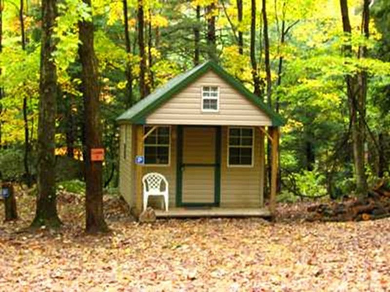 Rustic, Furnished Cabin W/ Electricity Surround By Trees & Whitewater Streams, holiday rental in Mount Storm