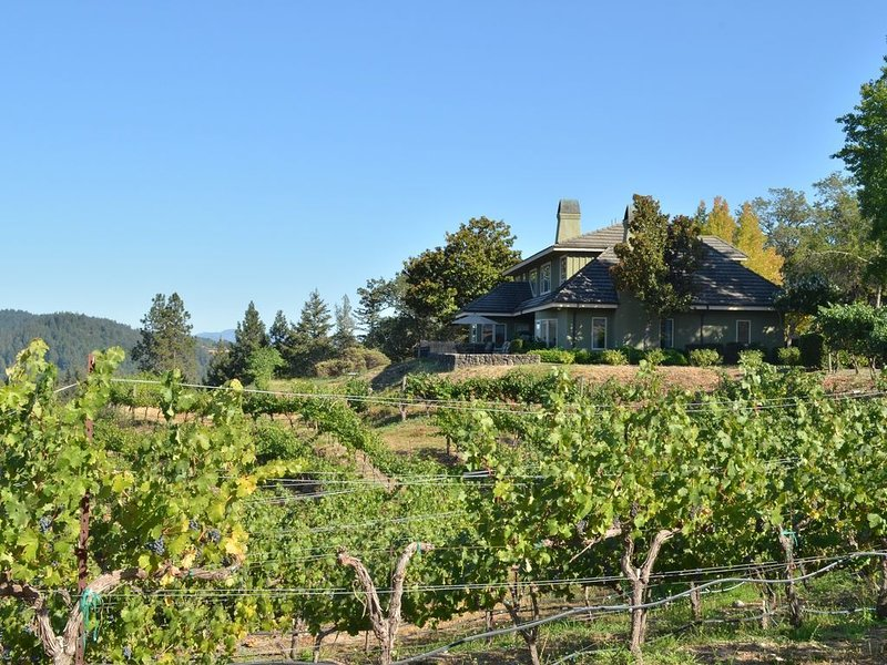 Beautiful Home Nestled in the Vines, holiday rental in Pope Valley