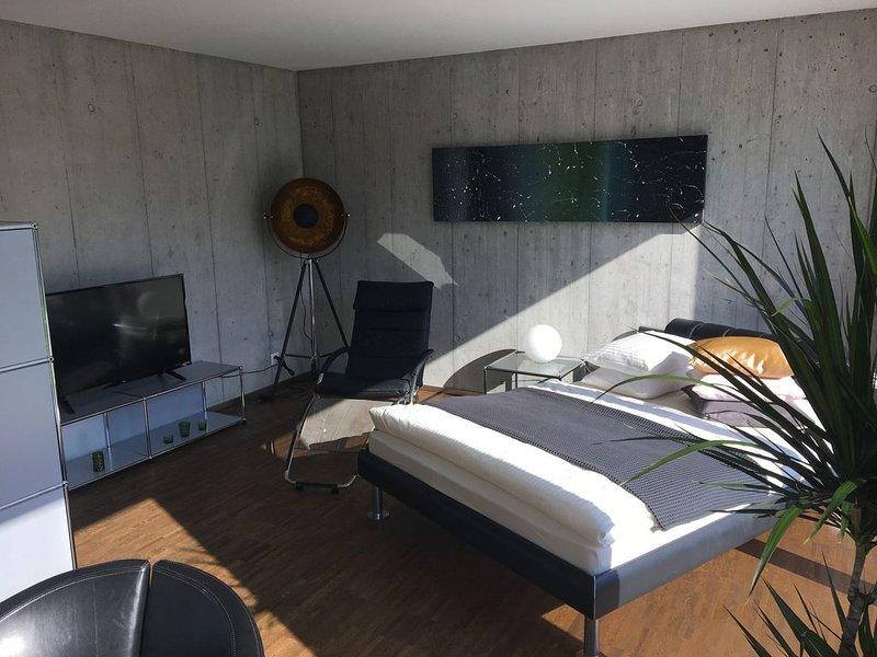 Uetikon am See - Studio, alquiler de vacaciones en Feldbach