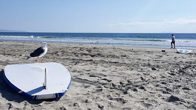Coronado beach life!, location de vacances à Coronado
