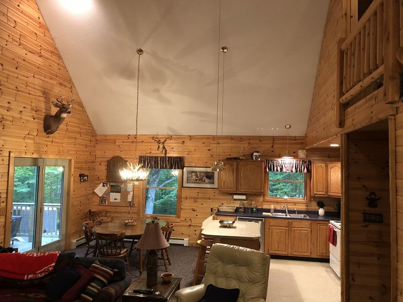 Beautiful wooded setting in Lakes of the North!, holiday rental in Alba