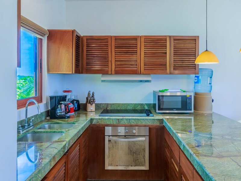 Immaculately clean, private villa! Saltwater pool, close to beach & town. BBQ!, holiday rental in Playa Mujeres