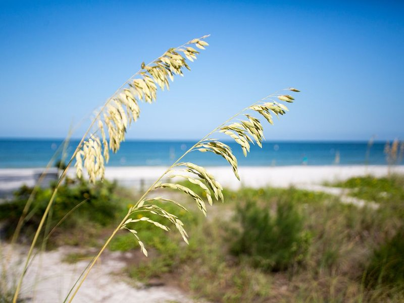 Just steps to the white sandy beach!, holiday rental in St. Pete Beach
