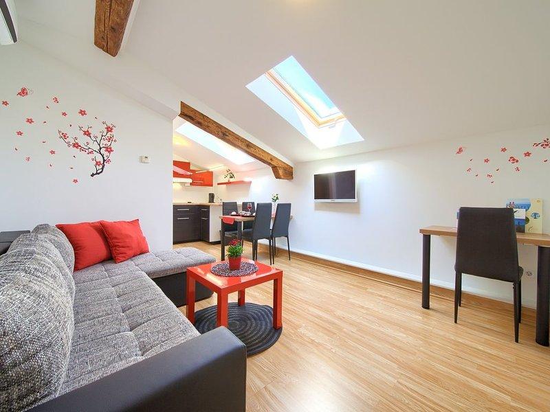 Modern apartments Muciceva ravan 2, holiday rental in Pasjak