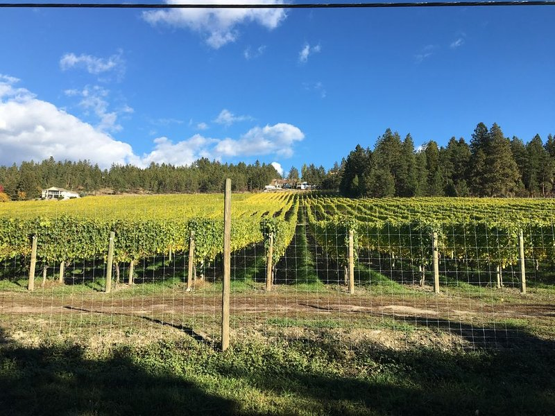 There are 7 wineries within a 5 m radius from our home.