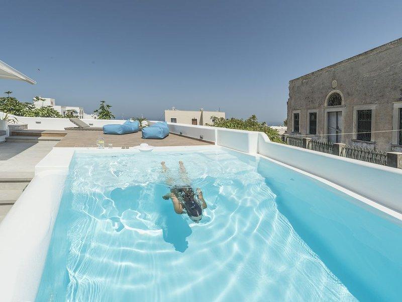 Secret Spot Luxury Villa | Private Pool | Jacuzzi | Brand New | Fira Town, holiday rental in Karterádhos