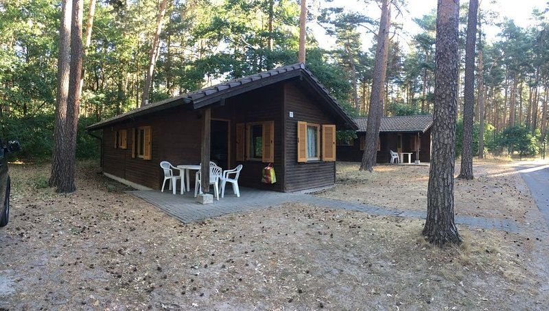 Ferienhaus mitten im Wald, alquiler vacacional en Haldensleben