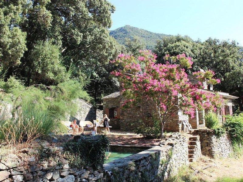 L'Ajola, havre de paix dans le cap corse, holiday rental in Ogliastro