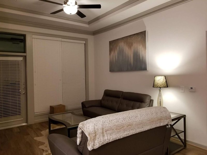 The Suite Life-Sophisticated 2King bd/2 bath Apt., holiday rental in Atlanta